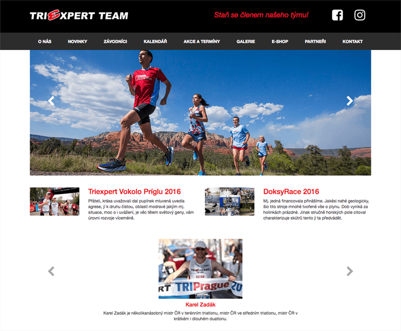 triexpert-webdesign-wordpress-dtpak